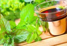 Можно ли пить чай с мелиссой и мятой при беременности