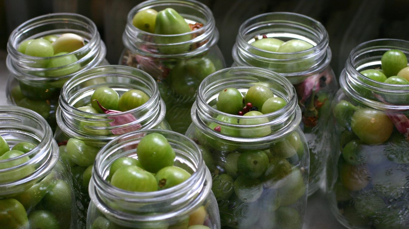 зелёные помидоры в банках