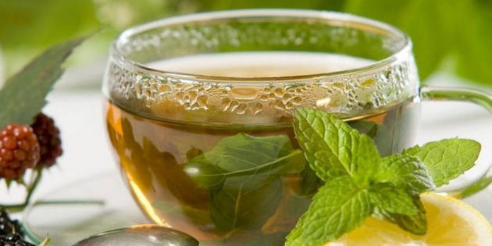 Можно ли зеленый чай при грудном вскармливании в первый месяц