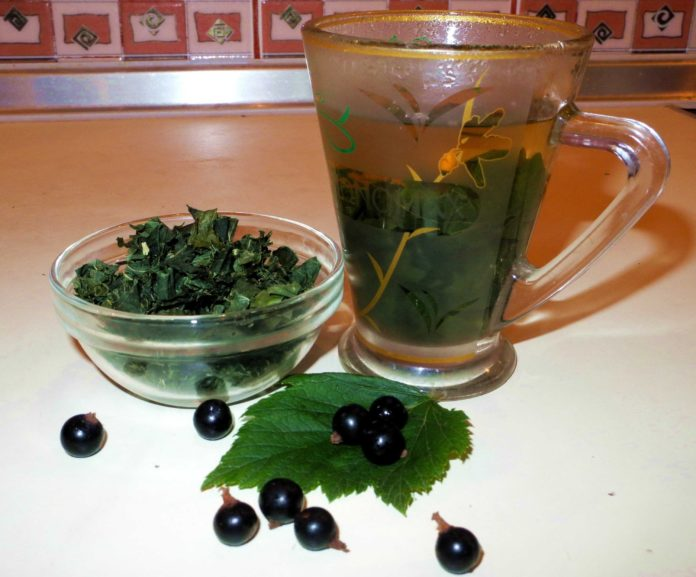 Полезные свойства чая измалины исмородины