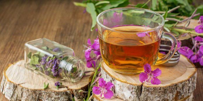 Как часто можно пить иван чай чтобы не навредить здоровью