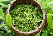 На сколько можно похудеть за 4 дня на зеленом чае
